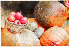 Pumkins and garnets. Autumn harvest - pumkins and garnets, artistic vintage picture royalty free stock photography