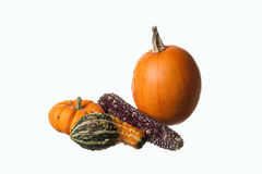 Pumkins, gourds, and corn.