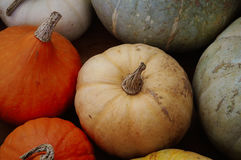 Pumkins on a ground Royalty Free Stock Images