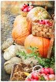 Pumkins i marknadstappningbild Arkivfoto