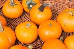 Pumkins oranges Photographie stock libre de droits
