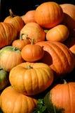 Pumkins. Pumpkins on display at local farm Stock Photography
