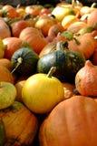 Pumkins. Pumpkins on display at local farm Royalty Free Stock Photos