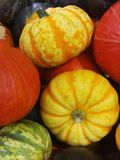 Pumkins and Squashes Royalty Free Stock Photos