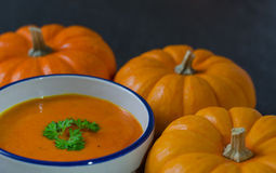 Pumpkin soup and row of pumkins Stock Photography