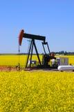pump för canolafältstålar Arkivfoto