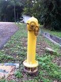 Pump för vatten för brandservice Arkivbild