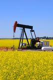Pump Jack In Canola Field Stock Photo