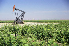 Pump jack oil. Well in field Stock Photos