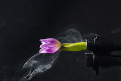 A pump shotgun barrel, which comes out of the smoke and pink tulip. Stock Photos