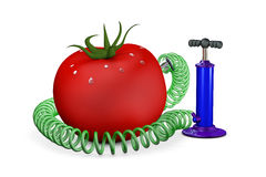 Pump swings air in a tomato Stock Photo