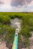 Pump water from the canal to the rice paddies. Stock Image
