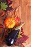 Pumpa, aubergine och muttrar på höstsidor på wood bakgrund för säsongsbetonat eller halloween semestrar bakgrund Fotografering för Bildbyråer