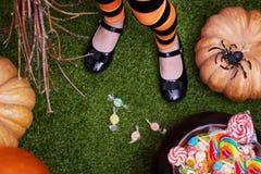 Pumpa, godis och häxa på gräs Fotografering för Bildbyråer