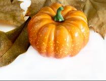 Pumpa hallowen Royaltyfria Bilder