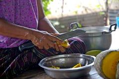 Pumpa i Thailand Fotografering för Bildbyråer
