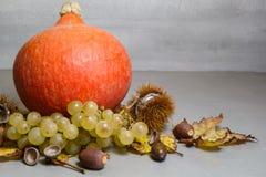 Pumpa kastanjer, skal, grupp av druva-, ekollon- och vinrankatjänstledigheter Royaltyfria Foton