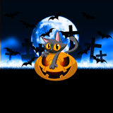 Pumpa Kitty Halloween Graveyard Royaltyfri Foto