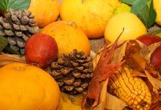 Pumpa och andra nya och torkade frukter i höstsäsong Arkivfoto