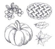 Pumpa och den bakade pajtranbäret skissar vektorn royaltyfri illustrationer