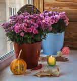 Pumpa och krysantemum bredvid en tänd stearinljus för Royaltyfria Bilder