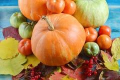 Pumpa- och tomatfrukter på blåa träbakgrund och höstsidor efter regnslut upp royaltyfria foton