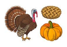 Pumpa och Turkiet bakade pajsymboler ställde in vektorn vektor illustrationer
