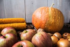 Pumpahöstgrönsaker och frukter på en träbakgrund Arkivfoto