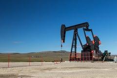 Pumpe Jack in Süd-Alberta Stockbild