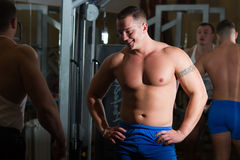 Pumped men in the gym. Young pumped power-lifter with a tattoo on his bicep posing in the gym Stock Photos