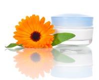 Pumpenflasche für Gesichtssahne Lizenzfreies Stockbild