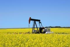 Pumpensteckfassung auf dem canola Gebiet Lizenzfreies Stockfoto