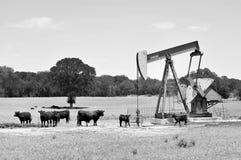 Pumper för Texas oljewell Arkivfoton