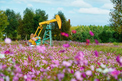 The pumping unit in sea of flowers Stock Image