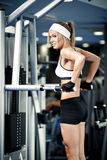 Pumping up muscles Stock Photography