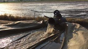 Pumping water to prepare the rice area stock video footage