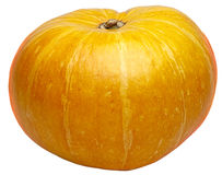 Pumpkin. Ripe pumpkin isolated on white Royalty Free Stock Images