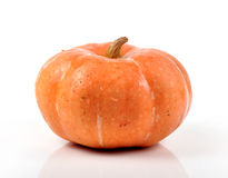Pumpkin. Isolated on white background stock images