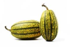 Pumpkin Stock Images