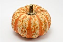 Pumpkin. Striped pumpkin on white background Royalty Free Stock Image