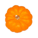 The pumpkin Royalty Free Stock Photo