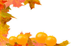 Pumpkin. Autumn leaves with pumpkins  border background Royalty Free Stock Photo