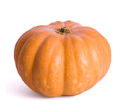 Pumpkin. On the isolated white background Stock Photos
