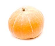 Pumpkin. Large orange pumpkin isolated on white Stock Image
