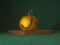 Pumpkin. Small pumpkin on the cut board. Green Background Stock Image