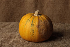 Pumpkin. The pumpkin lies on a sacking, behind a background from a sacking Stock Images