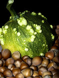 Pumpkin. A  green pumpkin and hazelnuts Royalty Free Stock Photos