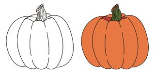 Pumpkin. Drawn  with a  graphics tablet Royalty Free Stock Images