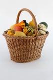Pumpkin. Small colour pumpkin in basketfull Stock Photography