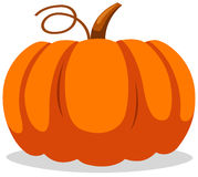 Pumpkin stock illustration